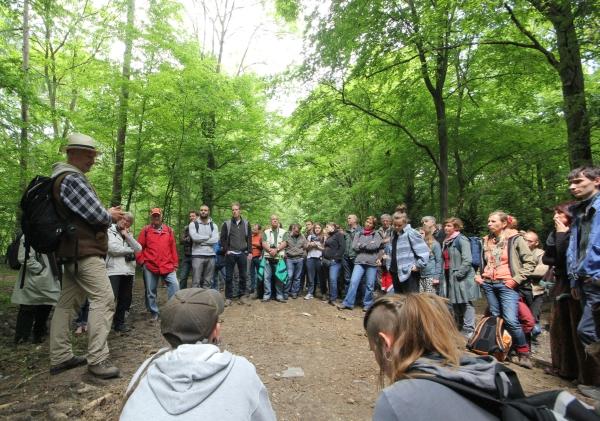 Kletterausrüstung Forst : Seilklemmen felder ag forst gartengeräte schutzbekleidung