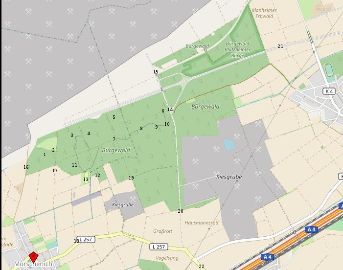hambacher forst karte Karte   Waldaktionskarte   Hambacher Forst