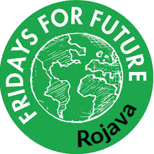 logo de fridays for future rojava
